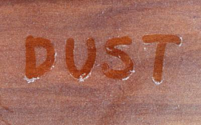 Dust and Dust Mites: What You Need To Know
